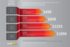 Business in a Box (Options)